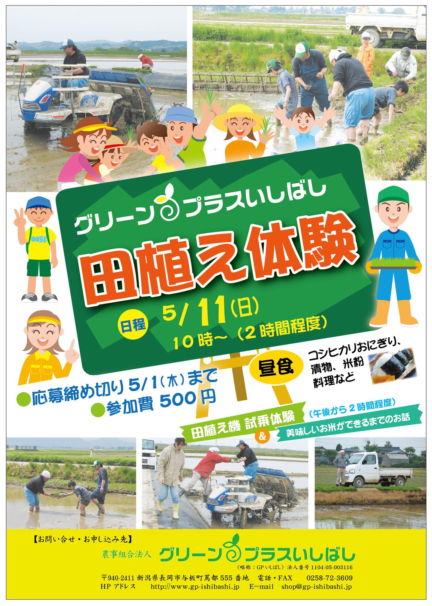 田植え体験2014